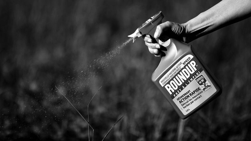 desherbant-roundup-monsanto